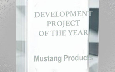 Development Project of the Year Award